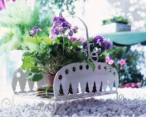 Potted geraniums in a white metal plant stand on gravel