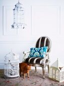 Brown tabby cat between an assortment of romantic birdcages and silver lacquered, upholstered baroque armchair