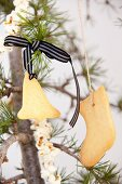 Biscuits hanging from ribbons and cords and popcorn garland on fir branches