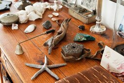 Seestern, Treibholz und andere Fundstücke auf naturbelassener Holzkommode