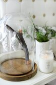 Stylised fir cones hanging from branch under glass cover and lit candle lantern on bedside table