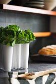 Leafy vegetables in white, designer Aalto vase