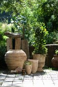 Collection of terracotta pots on paved terrace in front of low stone wall
