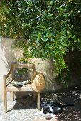 Sunhat hanging on simple wooden armchair next to cat sitting on floor of terrace