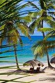 Sonnenschirm und Holzliegen an karibischem Palmenstrand
