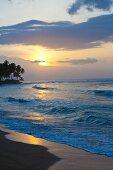 Wellen an Palmenstrand bei untergehender Sonne