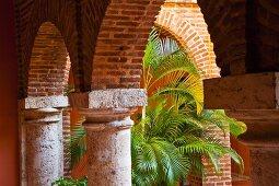 Historischer Säulengang aus der Kolonialzeit mit prächtiger Palme