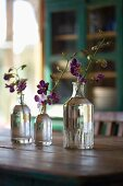 Orchid sprigs in retro, glass bottles on a wooden table