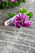 Scented pelargonium flowers and name tag as table decoration