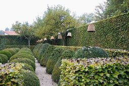 View along clipped hedges & box bushes with upturned terracotta pots on poles