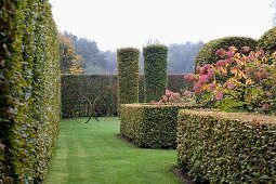 Clipped hedges & cylindrical shrubs in park-style gardens
