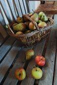 Äpfel und Birnen in Weidenkorb und auf einer Holzbank