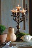 Antiker Kerzenleuchter im Rokokostil und kleine Kürbisse mit Moos-Dekoration