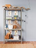Simple, industrial-style shelving unit decorated with natural materials; pendant lamp cables wrapped casually around branch