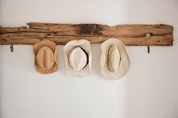 Summer hats hanging on rustic driftwood coat rack