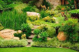 Landscaped stone terracing with tropical plants