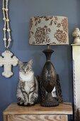 Sitzende Katze neben Tischleuchte mit gemustertem Lampenschirm auf Nachtkastnen vor blau getönter Wand