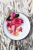 Pink rose and petals on enamel plate on wooden surface
