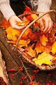 Teilweise sichtbares, junges Mädchen mit gesammeltem Herbstlaub und Früchten