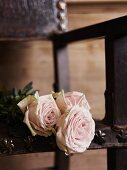 Antique chair with pale pink roses