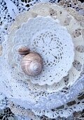 Empty snail shells in dishes made from moulded lace doilies