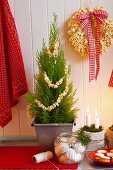Christmas biscuits, candles in moss, thuja as a Christmas tree and a popcorn wreath