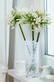 Glass vase wrapped in lace doily on windowsill