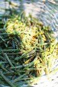 Gathered pine flowers in wicker basket