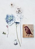 Painted, dried flowers and picture of sparrow on wooden board