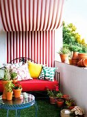 Romantic metal sofa beneath red and white striped fabric canopy and various potted plants in comfortable loggia