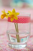 Two daffodils in glass with decorative masking tape