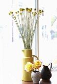 Craspedia und gelbe Rosen in Vasen und schwarzer Krug