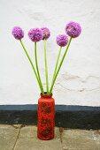 Zwiebelblüten in einer Vase vor weißer Wand