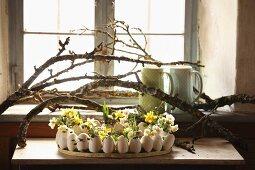 Gänseeier mit Frühlingsblumen dekoriert unter Ästen auf Wandtisch am Fenster