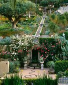 Large formal succulent garden with fountain in Los Angeles