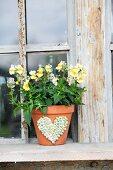 Gelbes Hornveilchen im Tontopf mit Herzmotiv aus Erbsen
