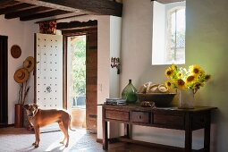 Dog in foyer of country house, vase of sunflowers on rustic, wooden console table