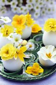 Eggshells used as miniature vases with yellow & white spring flowers