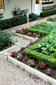 Bed of flowers and vegetables separated by low, topiary hedge