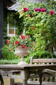 Urn planted with summer flowers on artistically carved, old wooden table and climbing rose on terrace in front of idyllic country house