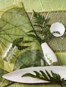 Arrangement of ferns in white vase and white china dishes lying on jungle-patterned fabrics