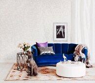 Elegantes blaues Samtsofa und weißer Polstertisch mit sitzendem Hund auf Teppich mit grafischem Muster