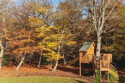 Treehouse with wooden staircase on edge of autumnal woodland