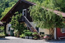 Courtyard and gable facade of large farm with wooden exterior staircase and plants growing up balustrade in summer sun