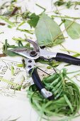 Secateurs with remains of flower stems, leaves and florists twine
