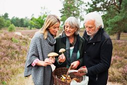 Elderly parents with their daughter hunting for mushrooms