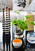 Arrangement of various home accessories and potted foliage plant on glossy black coffee table