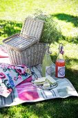 Sandwiches on plate, swing-top bottles and picnic basket decorated with gypsophila on checked blanket outdoors