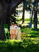 Set picnic table and chairs under trees