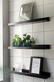 Vases of leaves and framed picture on black floating shelves on white-tiled wall